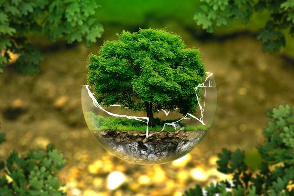 Inventaires biodiversité